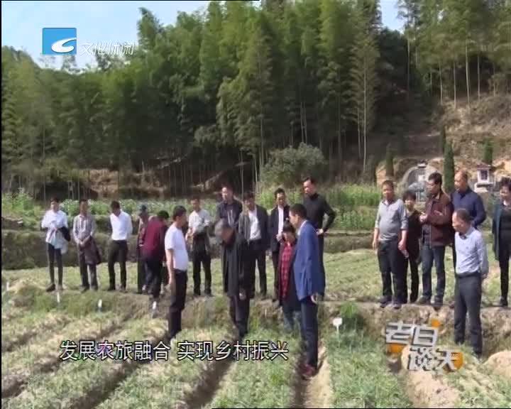 """争先进位大赶超:农技专家田间地头""""开良方"""""""