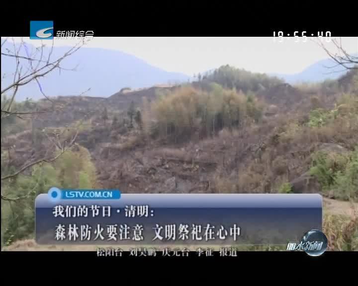 [我们的节日·清明]森林防火要注意 文明祭祀在心中