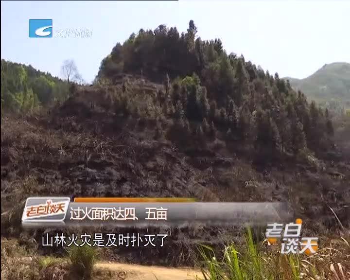 龙泉 两村民野外用火引发火灾连夜被拘留