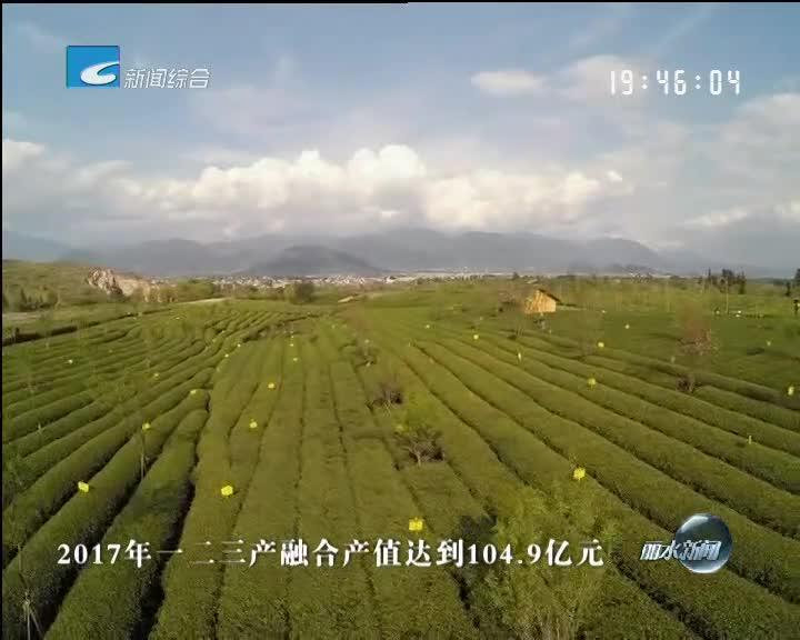 """创建绿色发展综合改革创新区:松阳:实施""""六大工程"""" 推进茶产业转型升级"""