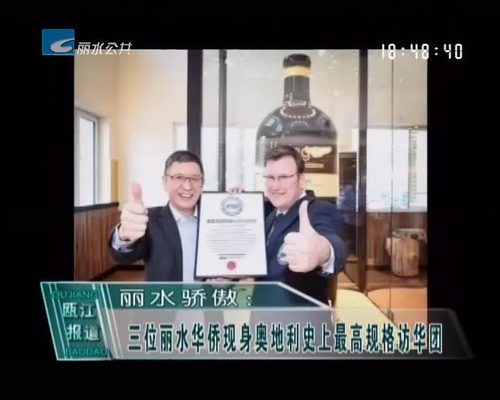 丽水骄傲:三位丽水华侨现身奥地利史上最高规格访华团