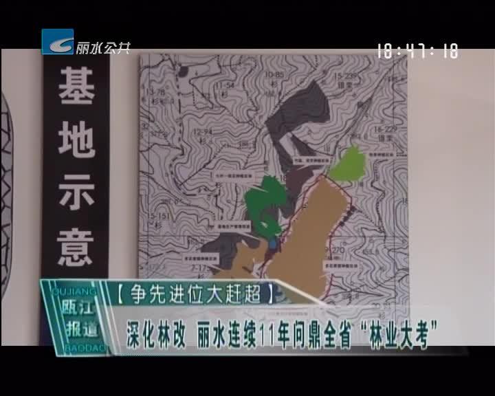 """[争先进位大赶超]深化林改 丽水连续11年问鼎全省""""林业大考"""""""