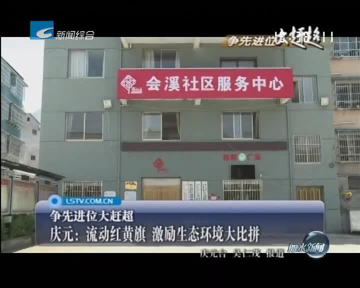 [争先进位大赶超]庆元:流动红黄旗 激励生态环境大比拼
