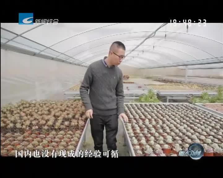 """筑梦新时代:吴勇——让""""多肉石寨""""景更美 民更富"""