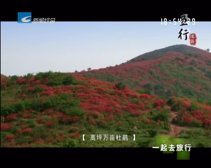 【一起去旅行】括苍古道春色浓 高坪杜鹃已盛开