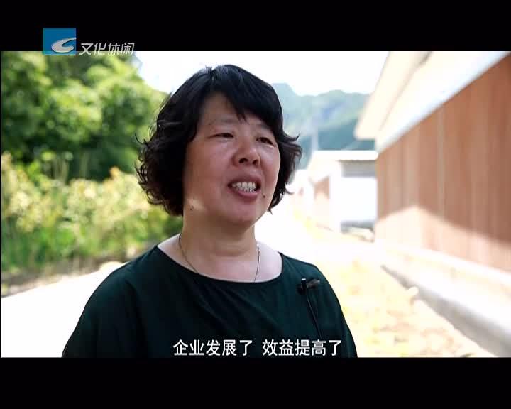 乡贤助推乡村振兴  应林翠:农民脱贫致富的领跑者