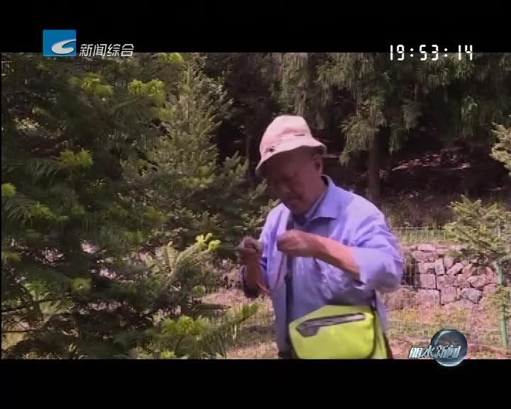"""筑梦新时代:吴鸣翔:让""""植物大熊猫""""绿满山头"""