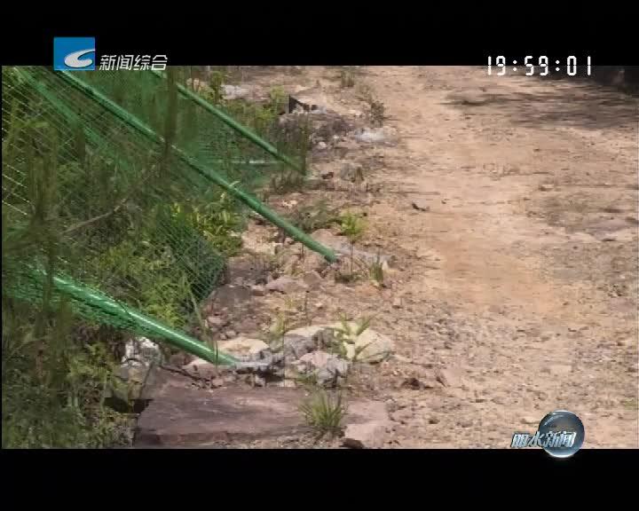 百姓热线:青田一饮用水水源防护网遭破坏