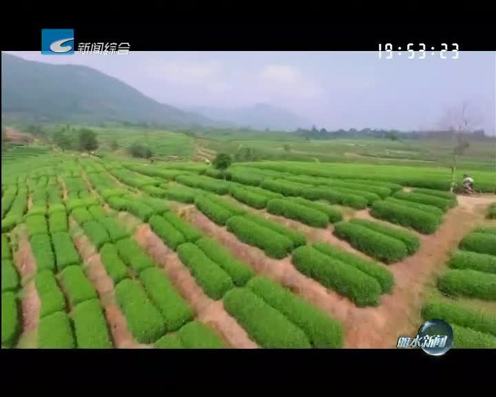 丽水金名片:中国优秀旅游城市