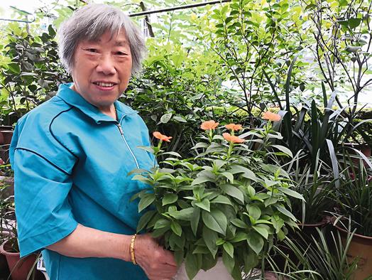 程蔼玲:90岁是起点 满怀热情地生活就是养生