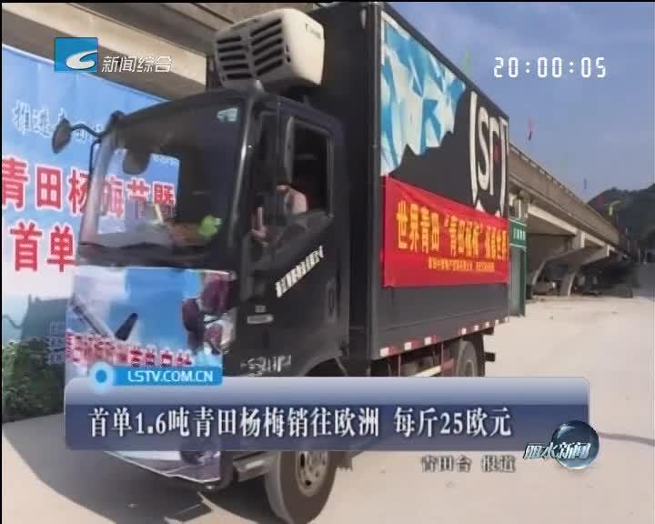 首单1.6吨青田杨梅销往欧洲 每斤25欧元