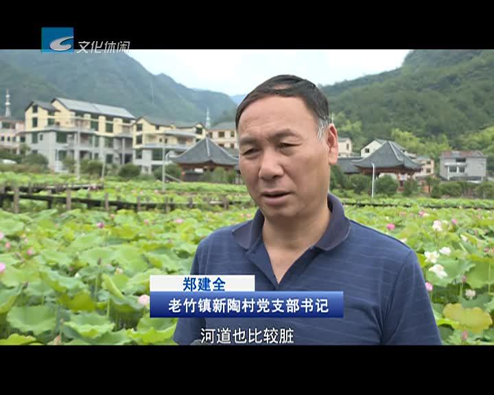 [乡村振兴带头人]郑建全:弃商回村 带领村民建设美丽新农村