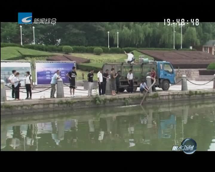 今年我市将在瓯江流域投放300多万尾鱼苗