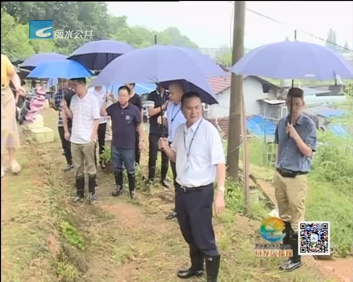 """开发区严阵以待防御""""玛利亚""""强台风"""
