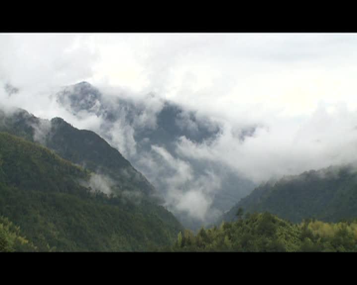 【风采】向山要发展 龙南乡走出致富新路子