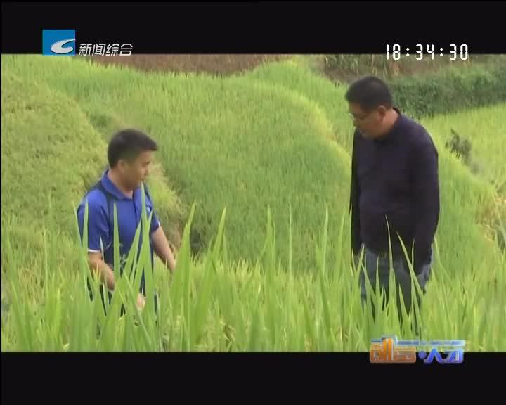 【创富人才】李冬:用脚丈量土地 用爱留下印记