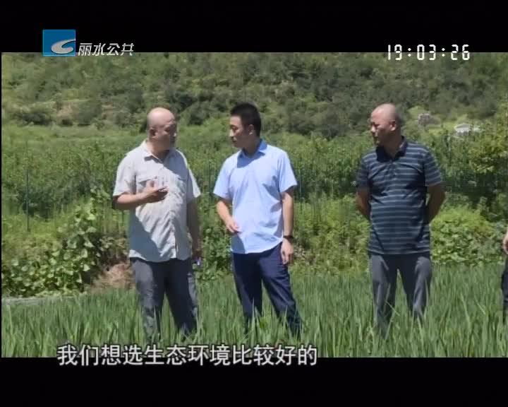 【每周聚焦】丽新乡:资本助力乡村振兴