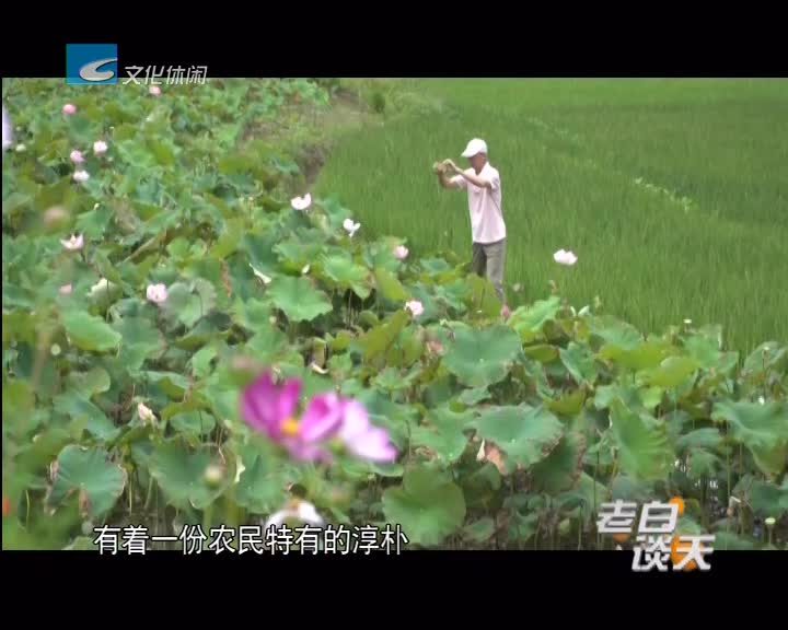 5天收入20万 避暑经济让村民乐开花