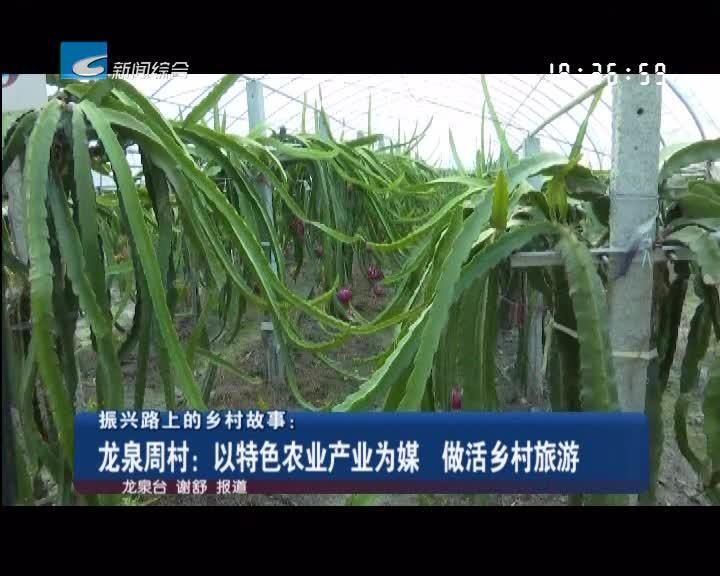 振兴路上的乡村故事:龙泉周村:以特色农业产业为媒 做活乡村旅游