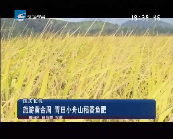 国庆长假:旅游黄金周 青田小舟山稻香鱼肥