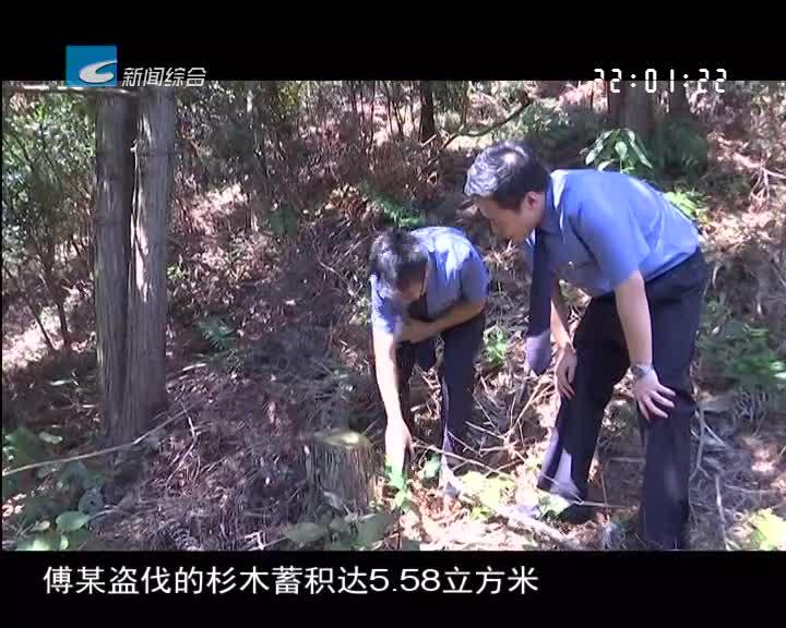 【生态检察】