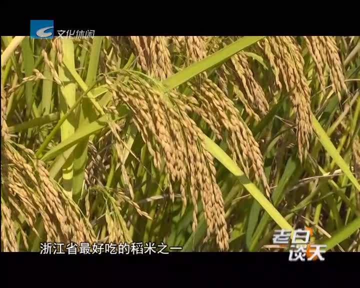 新稻米嘉丰优2号在龙泉市试种成功