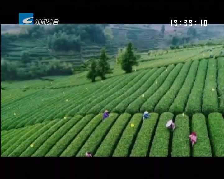 丽水金名片:中国气候养生之乡