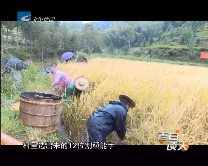景宁章坑尝新节:农耕民俗搭台 游客尝新庆丰年
