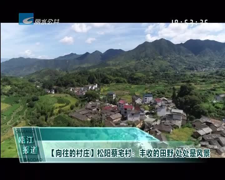 [向往的村庄]松阳蔡宅村:丰收的田野 处处是风景