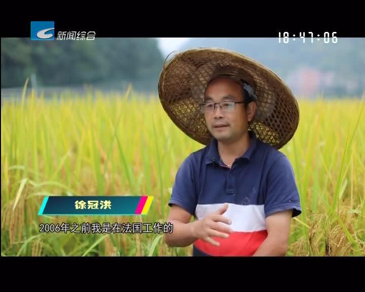 【寻味】青田稻鱼米:不可替代的主食滋味