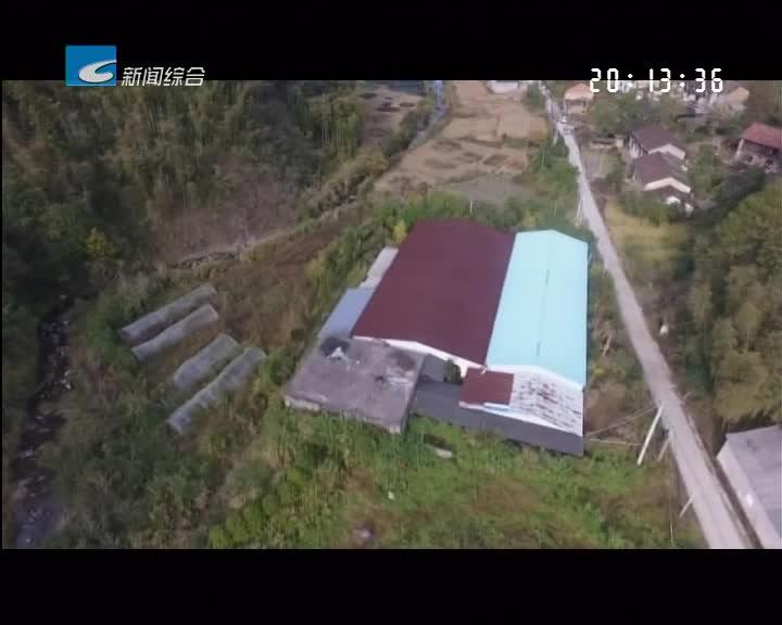 【每周聚焦】龙泉:香菇加工厂存在违建!