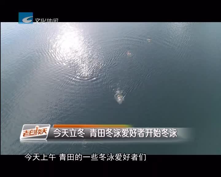 今天立冬 青田冬泳爱好者开始冬泳