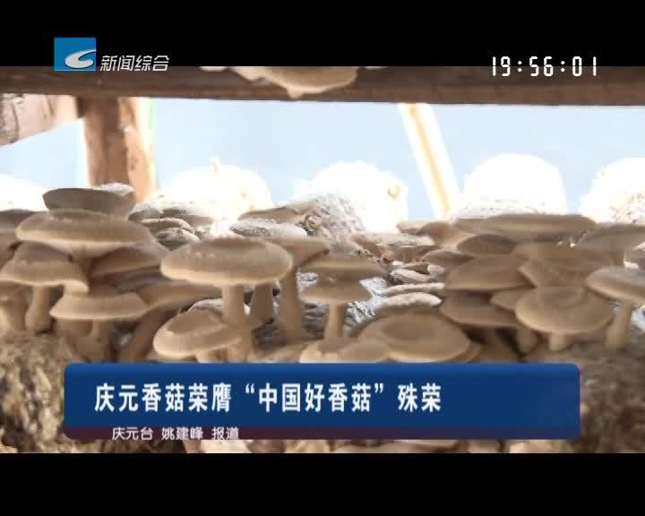"""庆元香菇荣膺""""中国好香菇""""殊荣"""