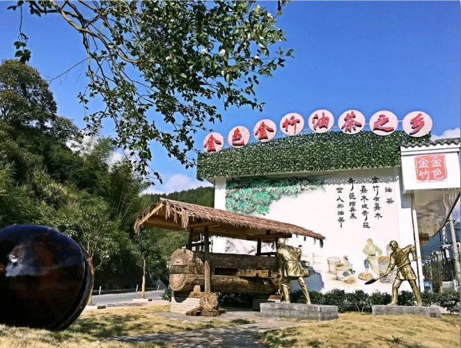 """【小城镇成果展示】金竹镇:""""油茶之乡""""来了解一下!"""