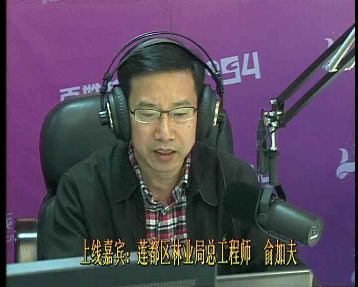 莲都区林业局总工程师  俞加夫