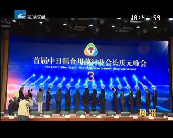 【风采】庆元:小香菇 大产业 香全球