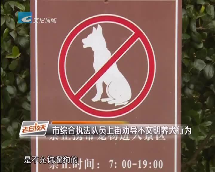 市综合执法队员上街劝导不文明养犬行为