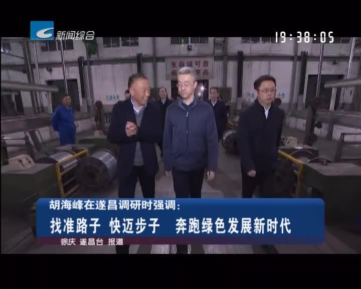 胡海峰在遂昌调研时强调:找准路子 快迈步子 奔跑绿色发展新时代