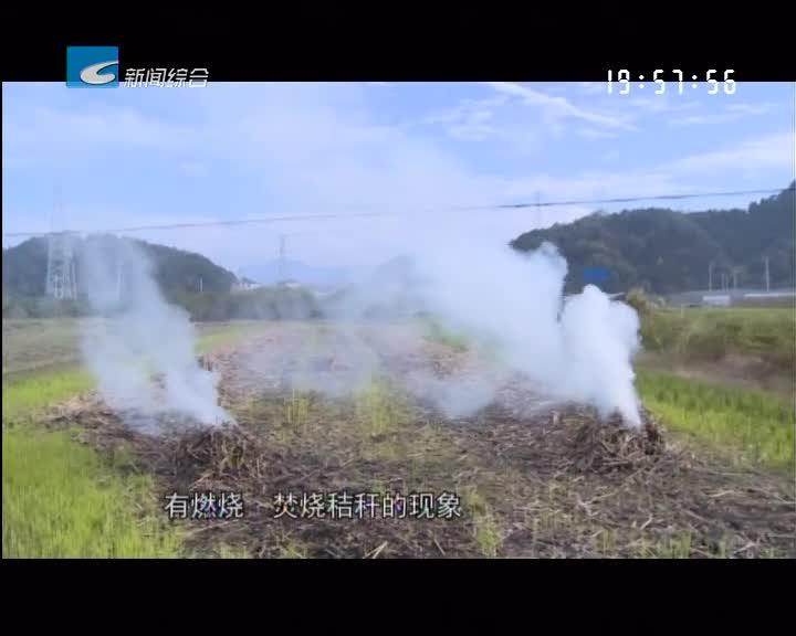 【每周聚焦】记者调查:露天焚烧 禁而不止