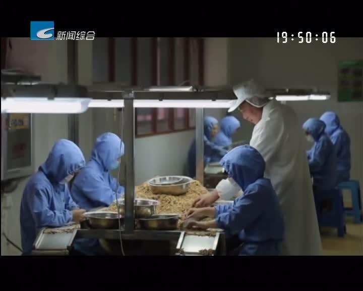 """新年伊始 龙泉食用菌企业力争""""开门红"""""""