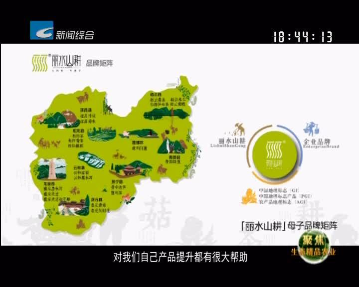 """【聚焦生态精品农业】4年 26亿——""""丽水山耕""""点""""绿""""成金"""