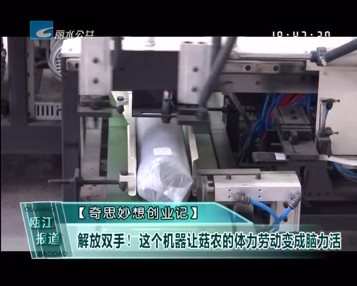 [奇思妙想创业记]解放双手!这个机器让菇农的体力劳动变成脑力活