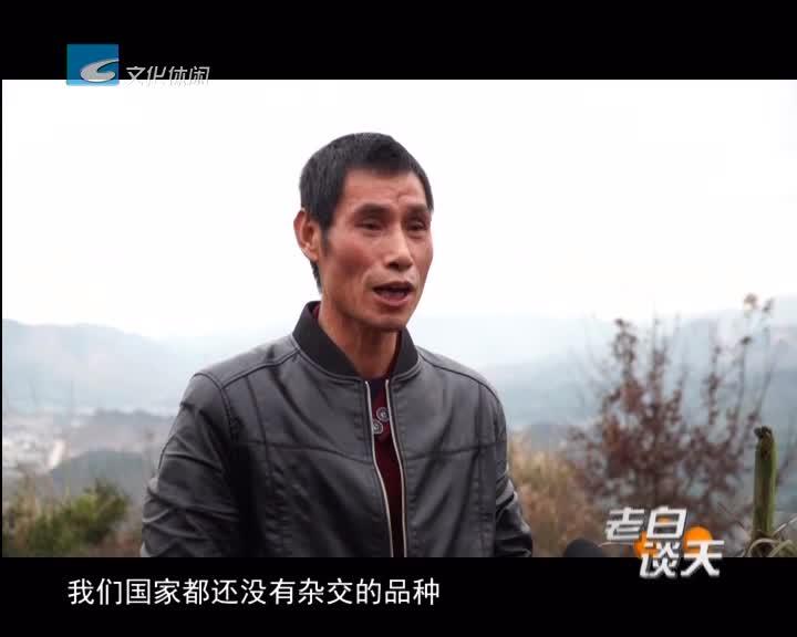 叶新明:放弃城市工作 回乡创立家庭农场