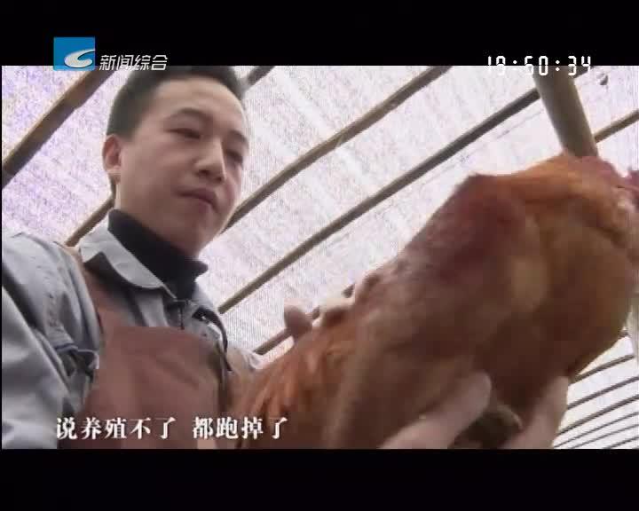 奔跑2019:吴林瀚:发展生态农业 助力乡村振兴