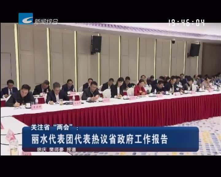 """关注省""""两会"""":丽水代表团代表热议省政府工作报告"""