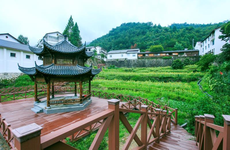 道太乡小城镇环境综合整治成就报道