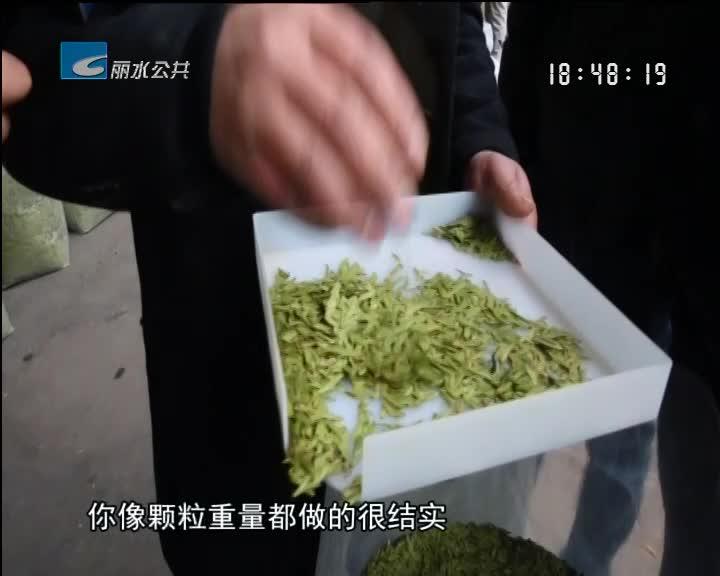 【春茶上市】浙南茶叶市场春茶交易红火 价格与去年持平