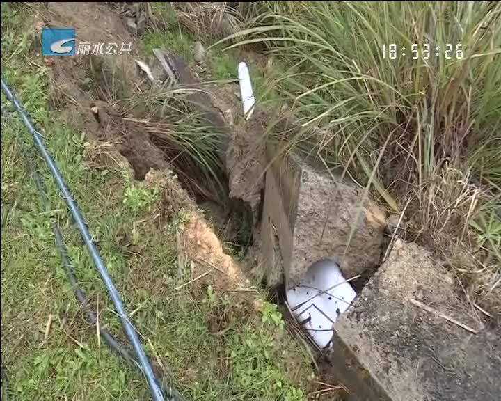 青田:农村生活污水处理设施上保险 首单获理赔