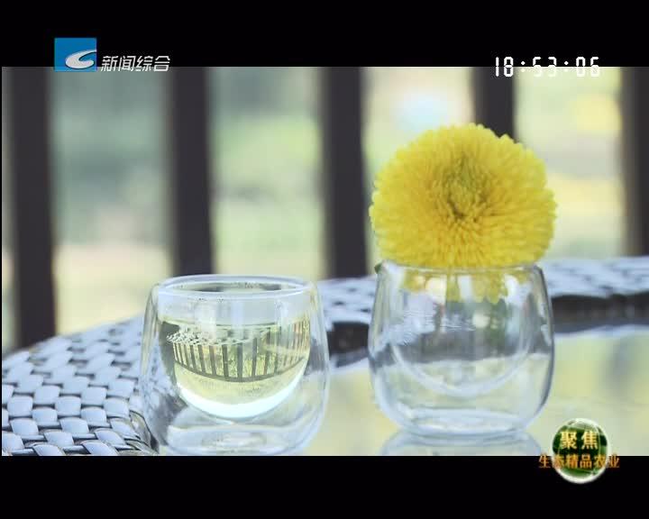 【聚焦生态精品农业】轩德皇菊:秉承原始 良心铸菊