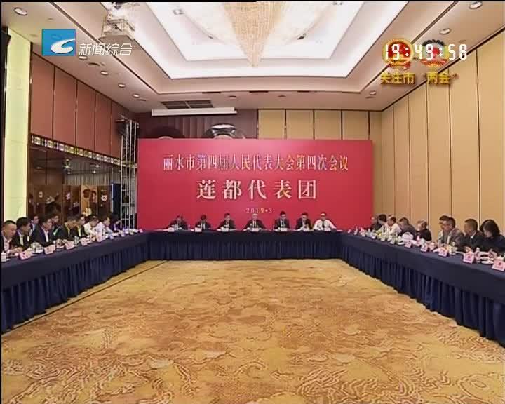 胡海峰参加人大莲都代表团审议政府工作报告